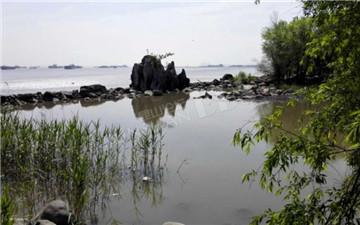 吴淞炮台湾 湿地公园这