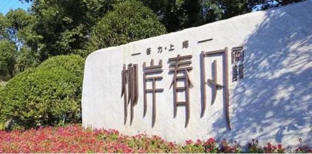 2018踩盘 江南水乡的柳岸春风