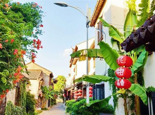 巴城老街--美景与美食