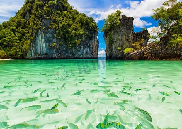 泡酒店,躺沙滩,坐帆船,看小鱼