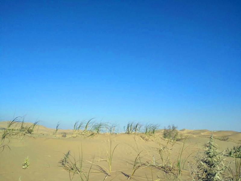 库布齐沙漠徒步穿越记