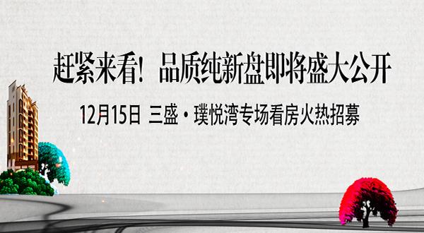 三盛·璞悦湾专场看房团