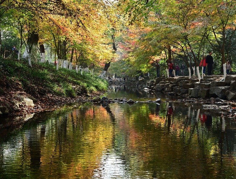 杭州九溪枫景