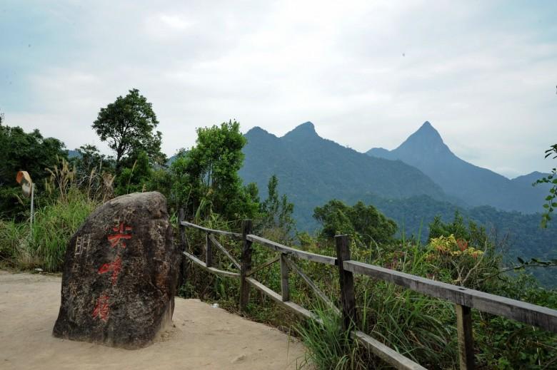 这里森林植被多样,动物种类丰富,有植物种类2800多种,占全国8%,占海南