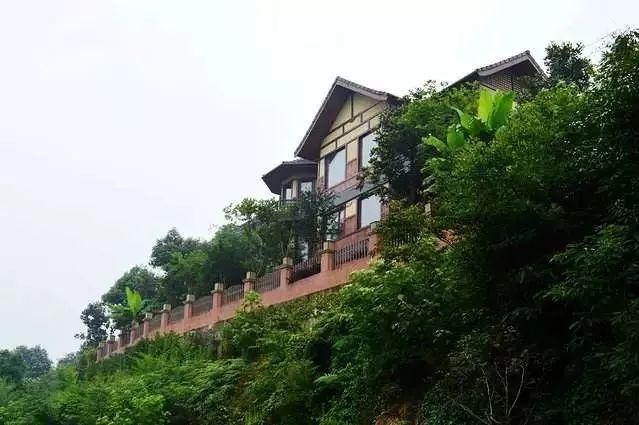苍松翠竹掩映下的一幢幢小木屋,全部采用皖南山区优质松木建造